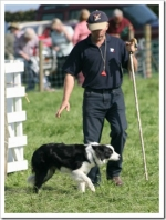 Visit Us At Macclesfield Sheep Dog Trials Friday 3rd & Saturday 4th August
